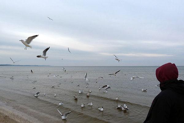Zurück in Deutschland an der Ostsee
